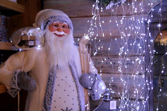 La magie de Noël chez Botanic Manosque