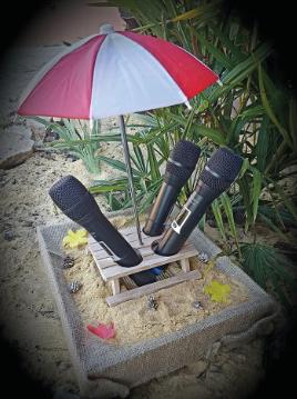 CONCEPT UNIQUE DANS LE DEPARTEMENT : BEACH BOX KARAOKe chantez les pieds dans le sable  !