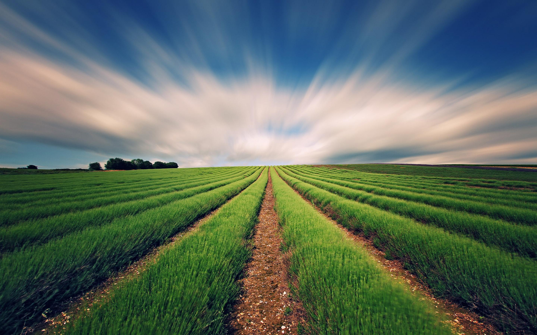 F te de l agriculture paysanne for L agriculture