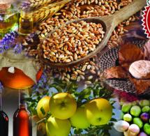 Fêtez la Gastronomie dans les Alpes de Haute Provence