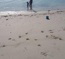 Manosquin à l'étranger : Karine Maurel en Nouvelle Calédonie