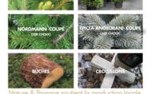Egayez vos fêtes avec les sapins de chez Nature & Paysage 🎄