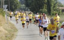 10 km des Vannades :  Le festival du sport le 8 septembre